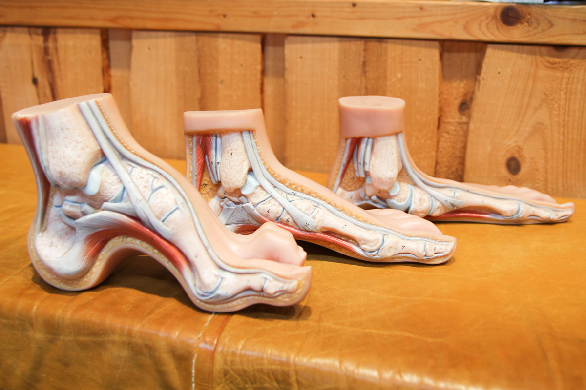 Test: Fischer Vacuum Fit skistøvler