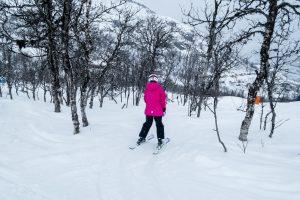 Børnevenligt skovskiløb langs de præparerede pister // Foto: Troels Kjems