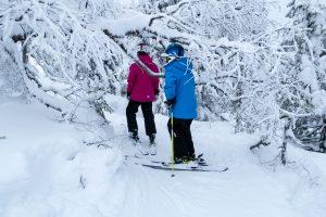 Der er børnevenlige skovpister overalt i Sälen // Foto: Troels Kjems