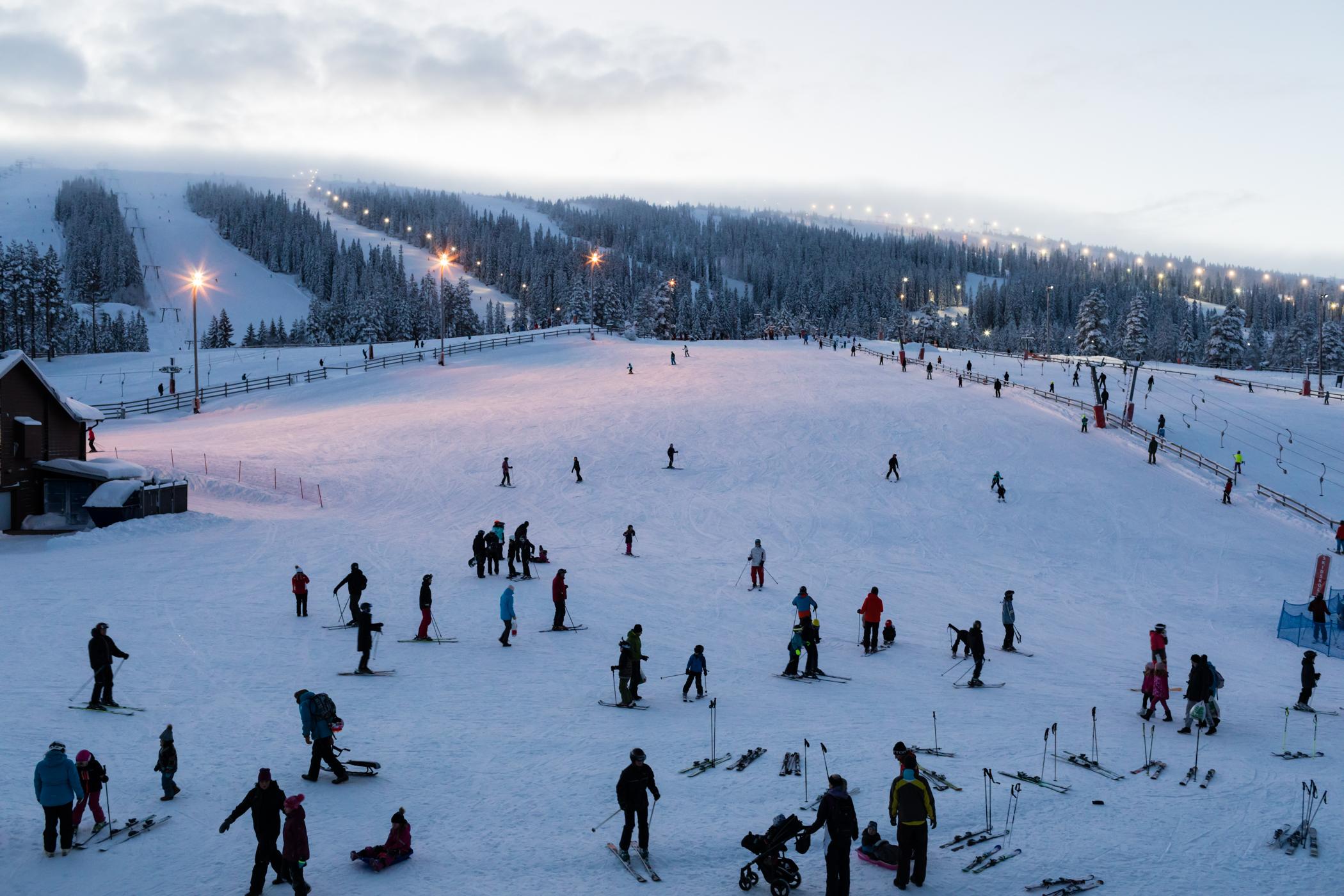 Omkring jul og nytår går solen ned ved 15-tiden // Foto: Troels Kjems